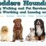 Hodders Hounds